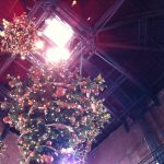 Picture of upside down Christmas trees hanging from the Ceiling